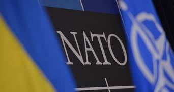 Доповідь про майбутнє Альянсу: Генсек НАТО врахує думку України та Грузії