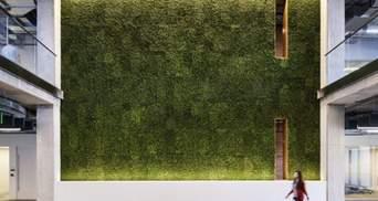 Офіс, що дбає про здоров'я: фото стильного екологічного дизайну з США