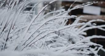 В Украине снова будет снежить и похолодает: что прогнозируют синоптики