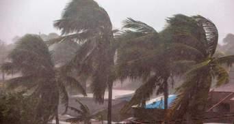 Побережью Флориды угрожает тропический шторм Эта: видео стихии