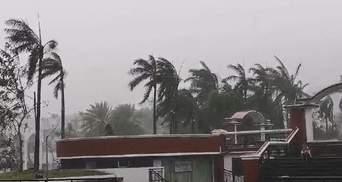 К Филиппинам приближается тайфун Улисс: тысячи людей эвакуируют– фото