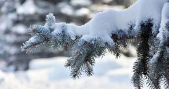 Карпати знову замело снігом: вражаюче відео