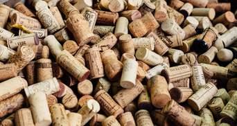 В ЕС продали 16 миллиардов литров вина в год: кто больше всего