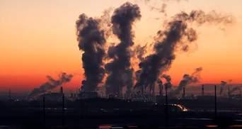 Чи вплинула пандемія COVID-19 на природу: дослідження ООН