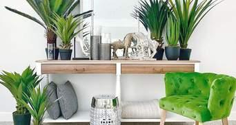 4 идеальных растения для кухни: названия, особенности и фото