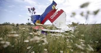 Альтернативные версии катастрофы рейса MH17 не будут рассматривать: решение суда Гааги