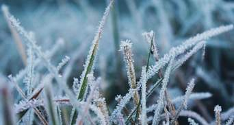 У перший день зими прогнозують мороз до -11 градусів: де буде найхолодніше