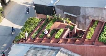Архітектурний проєкт 2020 року: екологічний будинок з червоним дахом у В'єтнамі – фото