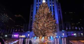 В Нью-Йорке открыли главную елку США: сказочные фото