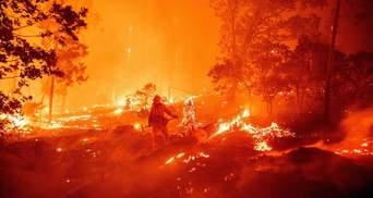 У Каліфорнії знову спалахнули пожежі: тисячі людей евакуювали – моторошні фото, відео