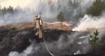 В Чернобыле подсчитали убытки от весенних пожаров