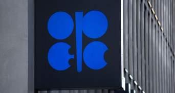ОПЕК резко снизила прогноз роста мирового спроса на нефть в 2021 году: что известно