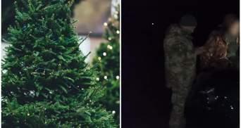 Краденые елки в домах: как в Украине и Канаде пытались заработать на зимние праздники