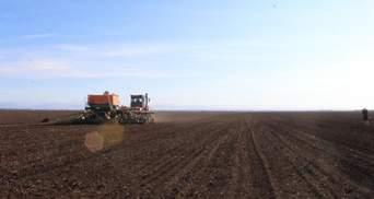 Чому вартість землі в Україні суттєво відрізняється по регіонам, – пояснення експертів