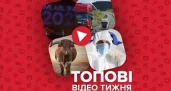 Карантинное празднование Нового года и специальные весы на дорогах Украины – видео недели