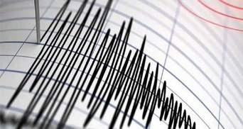 Ночное землетрясение на Закарпатье не принесло бед