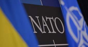 Это вопрос времени: посол Нидерландов об интеграции Украины в НАТО