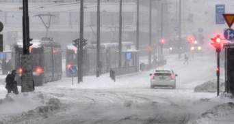 Швецию и Финляндию засыпало снегом: тысячи людей остались без света – фото