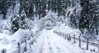 Прогноз погоды на 15 января: почти по всей Украине снегопады и морозы