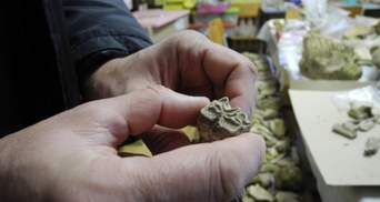 На Буковині виявили зуб мамонта, якому 300 тисяч років: фантастичні фото