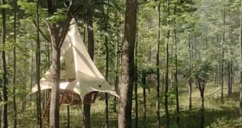 Нерухомість на дереві: фото диво-будинків, які кожен зможе взяти в оренду