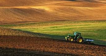 Незаконне отримання землі в Україні: які найбільш поширені схеми