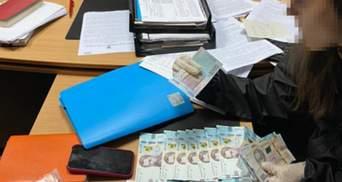 Задержали руководительницу одного из управлений налоговой службы: в чем ее подозревают