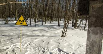Земля поблизу Чорнобиля: Уряд наказав провести інвентаризацію