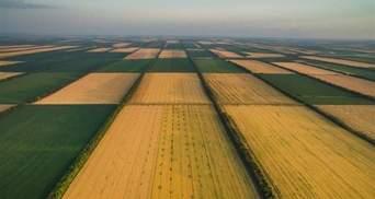 Земельний податок-2021: коли і скільки сплачувати