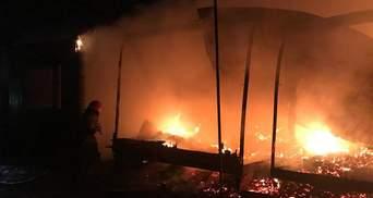 Крупный пожар на базе отдыха под Одессой: дотла сгорели 7 домиков – фото, подробности