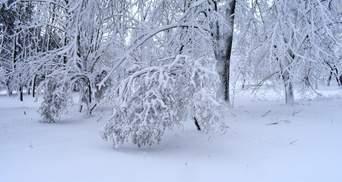 Снег до 30 сантиметров и угроза схода лавин: в Украину возвращается зима