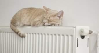 Компенсации за электроотопление: правительство утвердило порядок