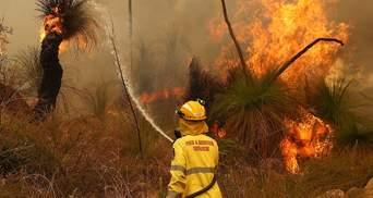 В Австралії знову спалахнули масштабні пожежі: сотні людей евакуюють – фото, відео