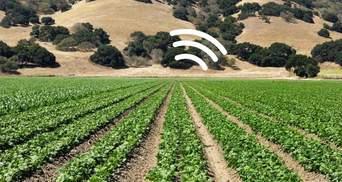 Попереджатиме про зміни клімату: дослідники навчили шпинат надсилати електронні повідомлення