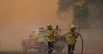 Нові масштаби лісових пожеж в Австралії: полум'я вирує біля найбільшого міста