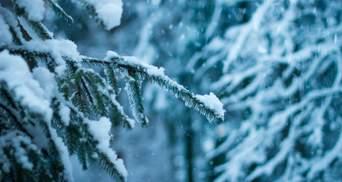 Прогноз погоды на 16 февраля: в Украине наконец-то не будет идти снег