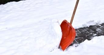Лопата-челендж и помоги толкнуть: в Киеве по-современному борются со снегопадом