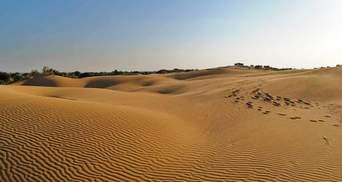 Вместо степей – пустыня: в Кабмине предположили неблагоприятный сценарий для Юга