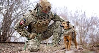Українські військові знялися у фотосесії з безпритульними тваринами: зворушливі кадри