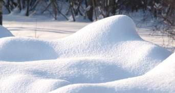 Житель Черниговщины заявил об убийстве отчима, чтобы перед его домом убрали снег