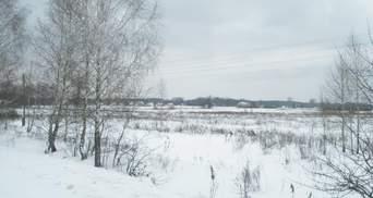 Негода не відступає: на Волині жінка замерзла насмерть посеред поля