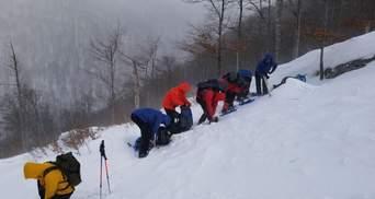 Вже третій день: туриста, який заблукав в горах, шукають пів сотні рятувальників