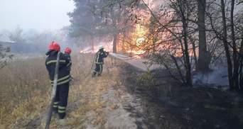 Пожары в Луганской области: руководителю ГСЧС и 5 инспекторам сообщили о подозрении