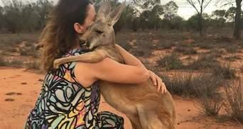 Место, где спасают осиротевших кенгуру: щемящие фото, видео