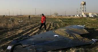 Прикрываются гостайной: Мамедов обвинил Иран из-за авиакатастрофы МАУ