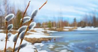 Прогноз погоди на 20 лютого: до України йдуть сонце та потепління