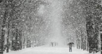 Львівщину рясно вкриє снігом: прогноз погоди на 20 лютого
