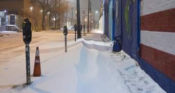 Хаос та брехня: відомий економіст проаналізував зимовий шторм у Техасі
