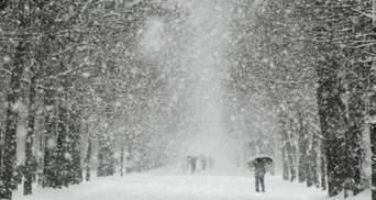 Львовщину обильно укроет снегом: прогноз погоды на 20 февраля