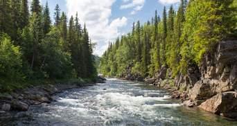 В Україні вперше провели скринінг річок: які небезпечні речовини вдалося знайти
